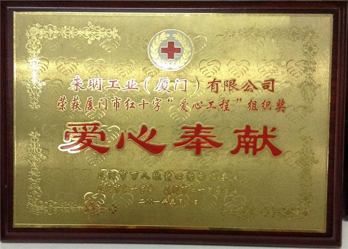 Red Cross Love Engineering Organization Award